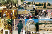 (From left) Top: An ancient seven foot thick olive tree at The Garden of Gethsemane; Celebrating the 44th Anniversary of The Liberation of Jerusalem in the Six Day War in 1967; The Citadel; 2nd row: The Cardo, a typical Roman street from the 6th century, now a Jewish mall in the Old City of Jerusalem; Thousands of youths gather at The Wailing Wall to celebrate The 44th Anniversary of its Liberation;A typical commercial street in the Arab Quarter of the Old City. Bottom: Statue of King David Playing the Harp in the old city; Jews pray routinely at The Tomb of King David while it�s being restored; The restored synagogue, The Ruin of Rabbi Yehuda the Hassidic, which has been destroyed by the Jordanians between 1948-1967; A view west from Mt. Olives: In center of photo is The Old City, above is The New City of Jerusalem, and below is Mt. Olives� Jewish Cemetery, which has been destroyed by the Jordanians between 1948-1967. Photos: Kanan Abramson