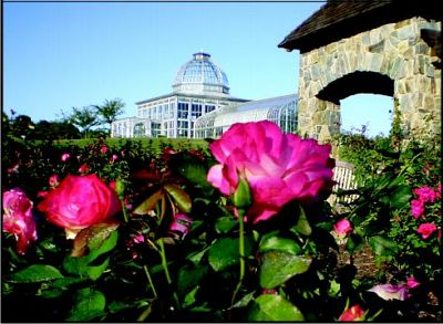 The Rose Garden with Conservatory in background at Lewis Ginter Botanical Gardens.