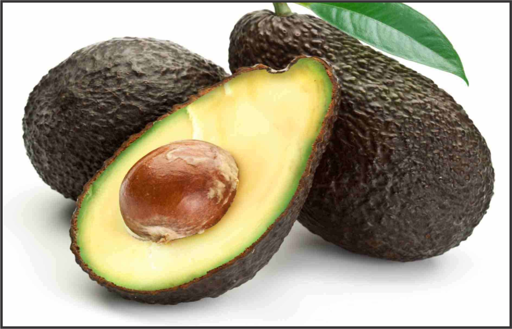 Israelis Train Palestinian Farmers to Grow Avocados